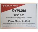 TRANSPORTER 3217/2 C TEMA przyczepa dwuosiowa, hamowana o DMC 800-1500kg